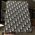 Dior/ディオール ipad pro 11inch 2020ケース ブランド メンズ レディースアイパッドエア1/2/3ケース 横開きモノグラム ダミエ アイパッド4/3/2ケース 手帳型iPad ミニ5/4手帳型カバー ブランドパロディ